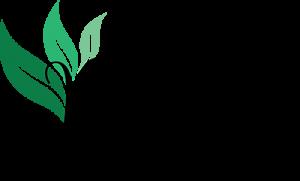 ReNew Medical Center Logo